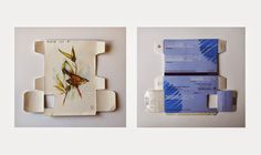 Sara Landeta: Új projekt