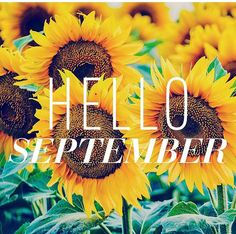 September is here, fall and Halloween inspiration, Time to start some new nail designs! More posts to come Hello September Quotes, Welcome September, Happy September, Hello October, Seasons Months, Months In A Year, 1 Year, Good Morning Picture, Morning Pictures