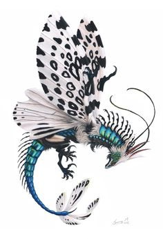Nov 2016 - Bottle leopard Moth Dragon by Sunima on Tattoo Leopard, Leopard Moth, Fantasy Beasts, Dragon Artwork, Butterfly Dragon, Butterfly Wings, Fantasy Dragon, Fantasy Kunst, Creature Concept
