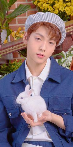 a bunny holding a bunny - TXT - Info Korea Anime Wolf, Kpop, Day6 Sungjin, Giant Bunny, Bunny Bunny, V Bts Cute, The Dream, Namjin, K Idols
