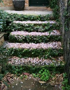 flower covered stairs