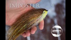 """Fly Tying: Imposter - 8"""" Flashtail Pike/Musky Fly - YouTube Pike Flies, Fly Tying, Fly Fishing, Bass, Tie, Youtube, Cravat Tie, Ties, Youtubers"""