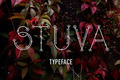Stuva typface by pixelwerk on @creativemarket