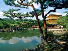 kyoto   - Explore the World with Travel Nerd Nici, one Country at a Time. http://TravelNerdNici.com