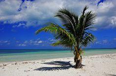 Tricks that all tourists traveling to Cuba should know - Trucos que todos los turistas que viajan a Cuba deben saber