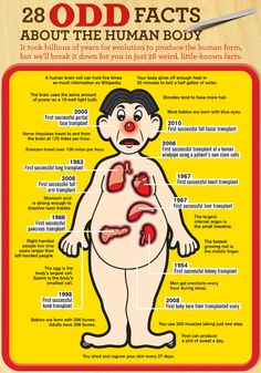 28 Facts about the Human Body