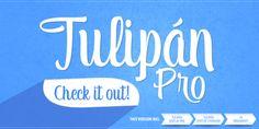 Tulipán - Webfont & Desktop font « MyFonts