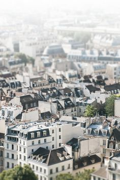 Paris Photography Paris Rooftops Architectural by GeorgiannaLane