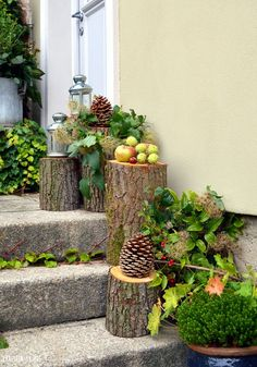 herb garden Hof DIY im Herbst und e - Daisy Flower Photos, Garden Art, Garden Design, Modern Landscaping, Autumn Garden, Autumn Nature, Plant Holders, Garden Projects, Vegetable Garden