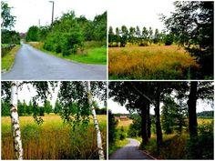 Krzewie Małe. Geocaching wiejsko - sielsko | GEOCACHING z VERENNE