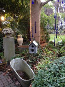 Hivernales au Jardin du curé à Huy