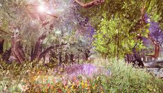 Sweet Silent Thought - III Fantasy, Thoughts, Sweet, Plants, Candy, Fantasy Books, Plant, Fantasia, Planets