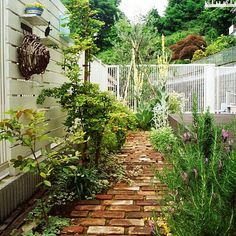 男性で、4LDKのレンガ/アンティーク/ブルーベリー/ガーデニング/ハンドメイド/DIY…などについてのインテリア実例を紹介。「手作りの目隠しフェンスと庭(通路?)全体です。」(この写真は 2015-06-19 20:08:38 に共有されました)