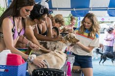 Trailers, featurette, images and poster for the comedy series INSATIABLE starring Debby Ryan. Films Netflix, Netflix Series, Tv Series, Debby Ryan, Insatiable Netflix, Film Streaming Vf, Dog Wash, Bad Cats