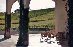 Moretti degli Adimari winery