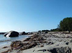 Spühlsaum am Strand von Thiessow (c) Frank Koebsch (3) #Ostsee #Rügen #Thiessow #Aquarell #Malreise #Aquarellkurs