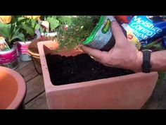Enjoy fresh herbs right outside your door by planting a container garden. This project can be done in an afternoon and is a great DIY for a beginner. (Video) #herbs