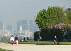 Allée Henri II - Parce du château de Saint-Germain-en-Laye http://louisegoingout.fr/balade-et-bonnes-adresses-a-saint-germain-en-laye/