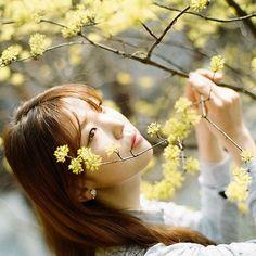 . .산수유  .  #filmcamera #filmphotography #twingkle #보케  #girl #portrait #프로필사진 #beautiful # #pretty #girlsonfilm #follow #profile  #koreaphoto #pretty #pinkholic #pinkcolor #핑크스냅 #pinksnap #pinkgirl #contax #girlsonfilm #pretty #alicefilm #pinkhair #분홍머리 #개인촬영 #koreaphoto #photographer #pinkfilm  #camellia #산수유 #봉은사