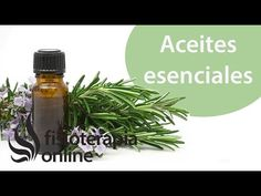 Utilización de aceites esenciales para el masaje y sus efectos y usos. - YouTube