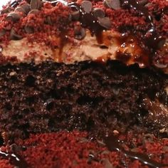 TRIPLE CHOCOLATE CAKE with RED VELVET OREOS Women and chocolate. It's like peanut butter and jelly or milk and cookies. They go together so well! This cake is sublime! INGREDIENTS Chocolate Cake -1 Box Devil's Food Chocolate Cake Mix -1 1/4 Cups Water -1/2 Cup Vegetable Oil -3 Eggs Chocolate Sauce -14 oz Sweetened Condensed Milk -1 Cup Semi Sweet Chocolate Chips Chocolate Whipped Cream Topping -2 Cups Heavy Whipping Cream -1/2 Cup Powdered Sugar -1/4 Cup + 2 Tbsp Cocoa -1/2 tsp Vanilla…