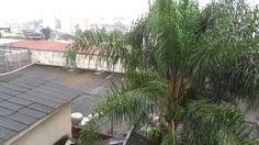 JABAQUARA SÃO PAULO-BRASIL - 02