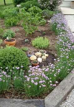 Before you take on your next landscaping idea, consider sketching out how you would like it to look first. You will also adjust the sketch more easily than.... FULL ARTICLE @ http://wowthatsmygarden.com/you-dont-need-to-hire-an-expensive-landscaper-use-these-simple-tips-instead/