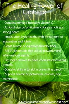 Blanched and cooled down a head of cabbage to store for use during the next few weeks. Here are the Health benefits of cabbage Health And Nutrition, Health Tips, Health And Wellness, Health Fitness, Health Vitamins, Nutrition Guide, Wellness Fitness, Cabbage Health Benefits, Healthy Life