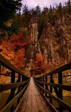 "Canyon Bridge, Slovenia  Slovenia--my ""ESOL"" goal"
