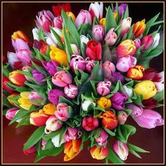 Diamond Painting Bouquet of Tulips Kit My Flower, Flower Power, Beautiful Flowers, Transparent Flowers, Tulip Bouquet, 5d Diamond Painting, Cross Paintings, Flower Pictures, Spring Flowers