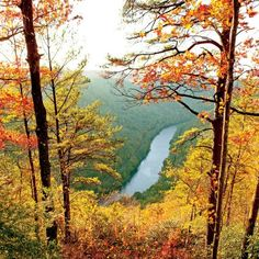 The South's Best Fall Color: New River Gorge
