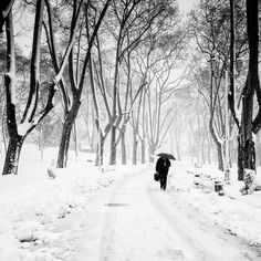 Winter Road, Winter Wonderland, Istanbul, Snow, Seasons, Outdoor, Outdoors, Seasons Of The Year, Outdoor Games