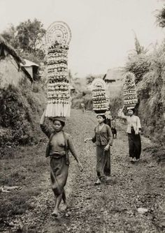 Women carrying offerings on their head. TROPENMUSEUM 1945 - 1955