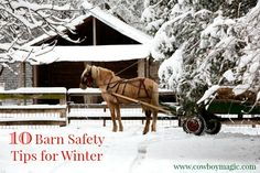 10 Barn Safety Tips for Winter from Cowboy Magic.