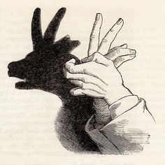 The Kid Hand-Shadow (Frank Leslie's Popular Monthly, February 1881)
