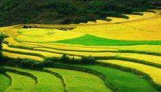 Five major Tet tourist destinations in Vietnam