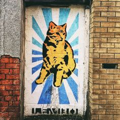 Cats look better in #Cardiff.  @visitwales #traverse16 by onetinyleap