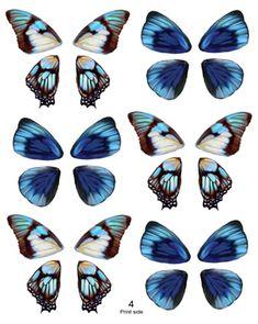 Mini Butterfly Fairy Wings - OOAK Artist Emporiium