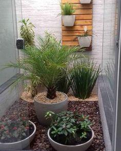 - Lilly is Love Tropical Garden Design, Interior Garden, House Plants, Planter Pots, Backyard, Exterior, House Styles, Nature, Flowers