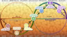 This is an image that displays the 7 Chakras of the Hindi Yuga 24,000 Year Cycle of the Ages. It also contains the Zodiac, Alchemy, 432hz Healing Frequencies and Various Gods & Goddesses =) -- here's the full size image: http://img.photobucket.com/albums/v303/wreckless13/chakras/DRG-CONSCIOUSNESS-CHART-000.jpg