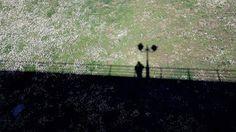 skepseis & photos: Φωτογραφία με κινητό τηλέφωνο