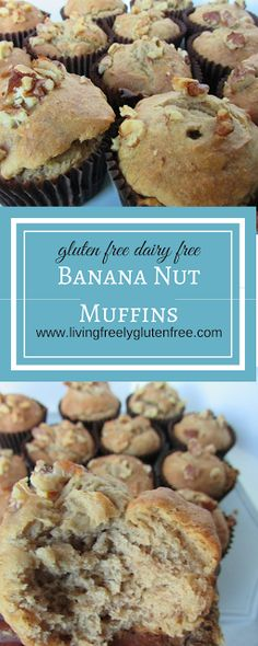 Banana Nut Muffins: Gluten Free and Dairy Free. Moist and delicious perfect treat to go with your morning coffee or afternoon tea. www.livingfreelyglutenfree.cm Delicious gluten free muffins. Simple gluten free muffins. Perfect banana nut gluten free muffin. Gluten and dairy free banana nut muffin.