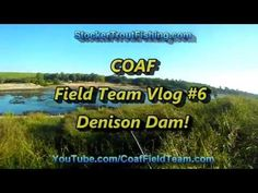 "COAF Field team Vlog #6 - ""Denison Dam"" - Stocker Trout Fishing Stocker Trout…"