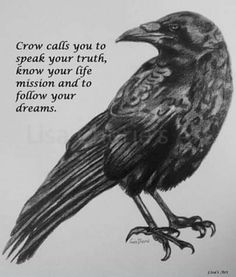 Crow Spirit Animal, Animal Spirit Guides, Magick, Witchcraft, Wiccan, Crow Totem, Crow Bird, Crow Call, Animal Meanings
