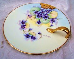 """Outstanding Bavaria 1905 Hand Painted """"Violets"""""""
