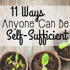 11 Ways Anyone can be Self-Sufficient. Self-sufficiency doesn't have to be achieved by living off the grid. ANYONE can be self-sufficient by making a few simple changes to their life! Be Natural, Natural Living, Simple Living, Self Sustaining, Mein Land, Living Off The Land, Urban Homesteading, Off The Grid, Green Life