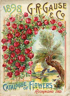 vintage flower seed pack