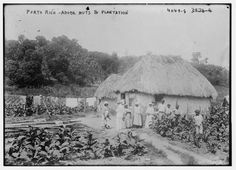 early photo Puerto Rico Adobe huts plantation Vintage Black White P Old Pictures, Old Photos, Vintage Photos, The Woman In White, Puerto Rico History, Puerto Rican Culture, Enchanted Island, Puerto Rican Recipes, Famous Places