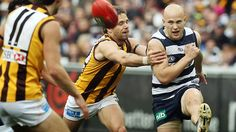 Australian Football League (AFL) Gold Coast Suns vs Geelong Cats at Metricon Stadium, Round 14 on, Saturday, June (AEST). Its Gary Ablett vs Geelong Cats is new and little master something Australian Football League, Tv Channels, Gold Coast, June, Cats, Sports, Hs Sports, Gatos, Cat