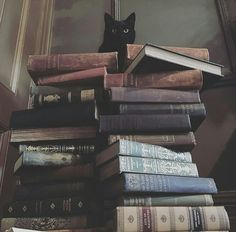 Black cat books and cat pets cute - books & libraries - . - Black cat books and cat pets cute – Books & Libraries – pets - Witch Aesthetic, Book Aesthetic, Black Cat Aesthetic, Autumn Aesthetic, Aesthetic Vintage, Photo Chat, Coven, Crazy Cat Lady, Love Book